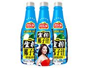 欢乐家1.25千克生榨椰子汁(清爽型)