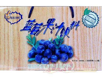 银滩大拇指蓝莓果粒果汁饮料手提箱装