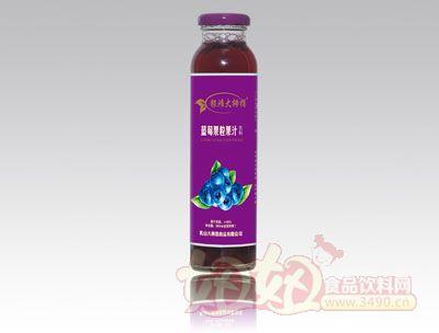 银滩大拇指蓝莓果粒果汁饮料紫瓶