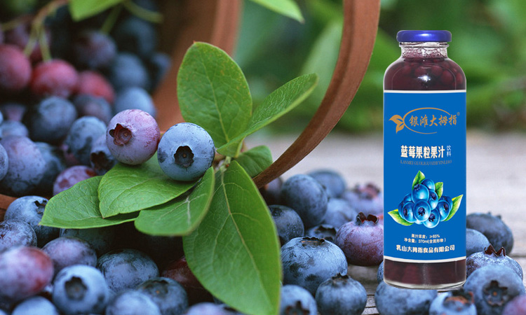 银滩大拇指蓝莓果粒果汁饮料蓝瓶