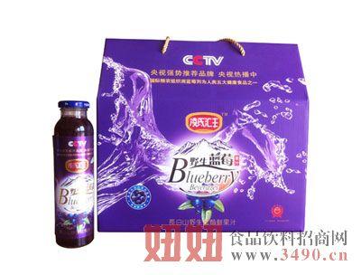 长白山野生蓝莓果汁饮料礼盒