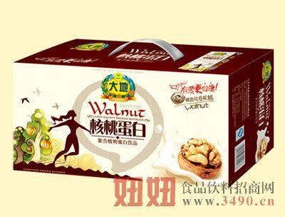 大地250mlX20核桃植物蛋白饮品