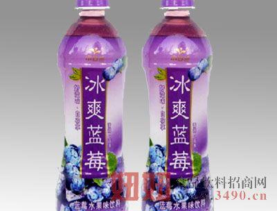 小白兰冰爽蓝莓果汁500ml