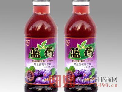 小白兰野生蓝莓汁饮料460ml