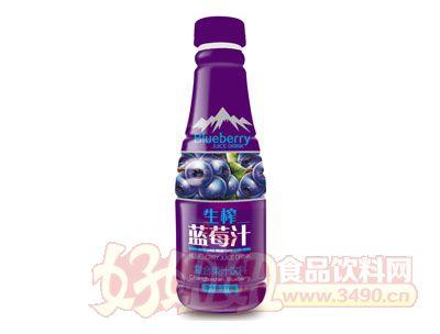 酷汁源生榨蓝莓汁500ml