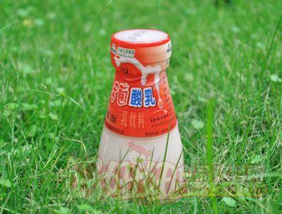 瓶装活菌酸乳195ml