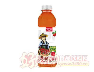 龙力卡生榨山楂汁600ml