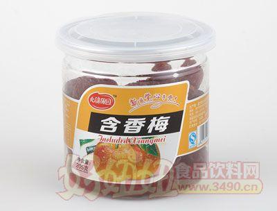 心味果园205克含香梅