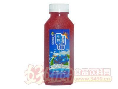 美茹奢香蓝莓汁300ml