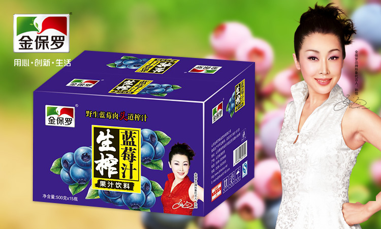金保罗生榨蓝莓汁500g×15瓶