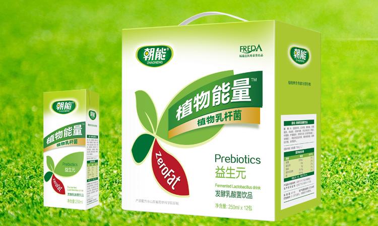 朝能植物能量植物乳杆菌250mlx12盒
