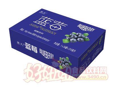 达威蓝莓碳酸饮料1×24罐×310ml