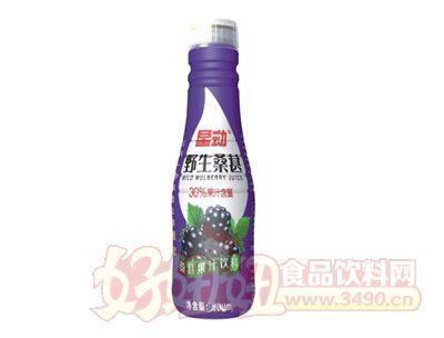 星动野生桑葚果汁饮料500ml