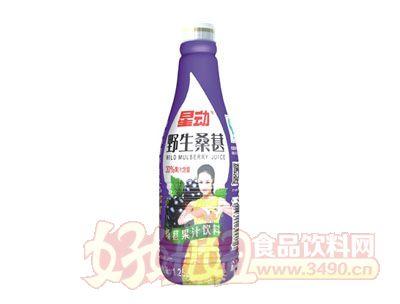 星动野生桑葚果汁饮料1.25L