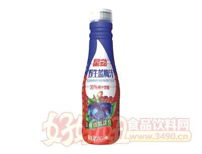 星动野生蓝枸杞植物饮料500ml