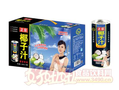 汇之果正宗椰子汁240ml×10罐