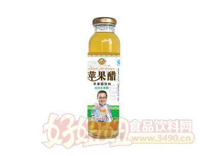 亿佳果园300ml苹果醋