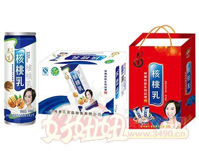 养生精品型核桃乳标准箱240ml×20罐