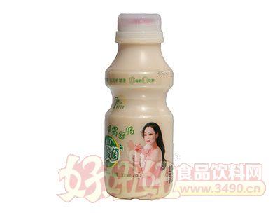 慧能多健胃舒肠原味乳酸菌饮品330ml