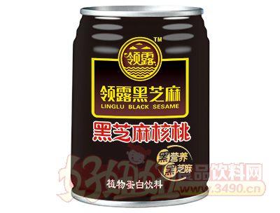 领露黑芝麻核桃植物蛋白饮品