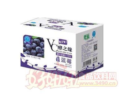 强人VC酵之缘蓝莓果汁饮料450gx15瓶