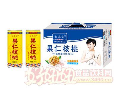 果仁核桃植物蛋白饮料礼盒