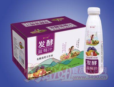 郑小红发酵蓝莓汁乳酸菌果汁饮料500ml×15瓶