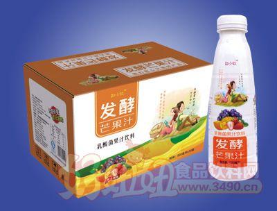 郑小红发酵芒果汁乳酸菌果汁饮料500ml×15瓶