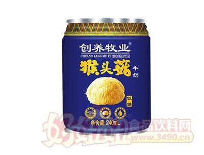创养牧业猴头菇牛奶240ml