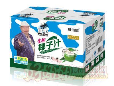 椰钜生榨椰子汁植物蛋白饮料500ml×15瓶
