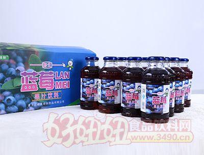 350ml蓝莓果汁饮料展示