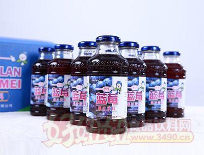 350ml蓝莓果汁饮料特写