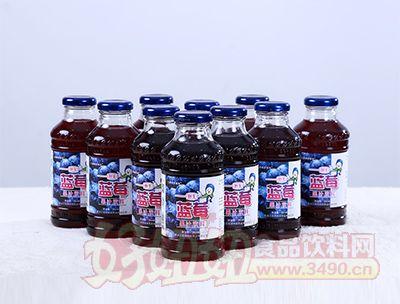 350ml蓝莓果汁饮料(排列)