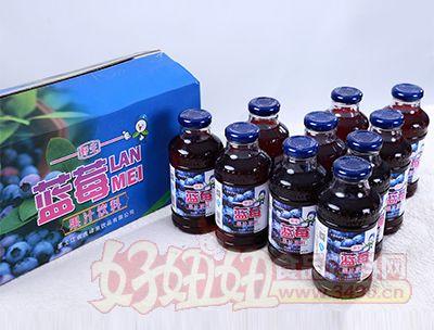 350ml蓝莓果汁饮料样品