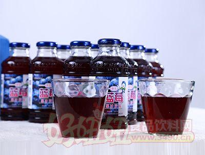 350ml蓝莓果汁饮料(杯注)