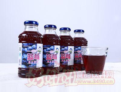 350ml蓝莓果汁饮料(样品)