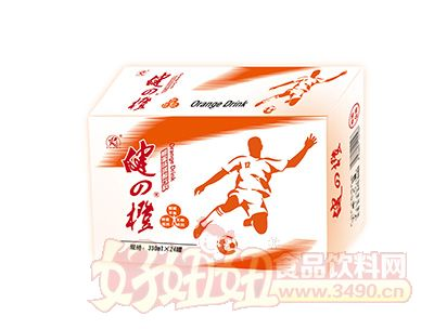 雨瑞健之橙碳酸饮料330mlx24罐
