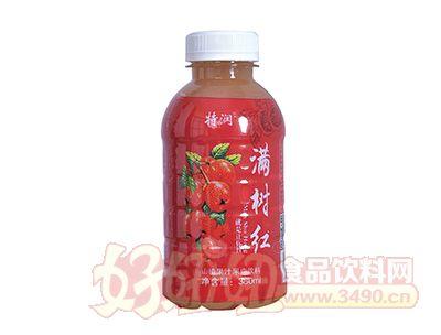 特润满树红山楂果汁果肉饮料380ml