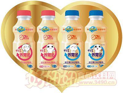 聪明点畅享养胃多益生菌风味发酵乳350ml