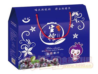 浩园生榨蓝莓果汁礼盒