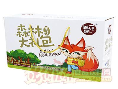 一只狐狸休闲乐虎体育