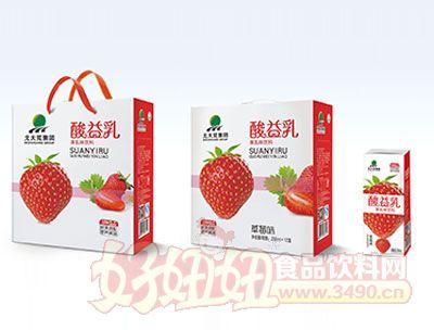 北大荒酸益乳250ml*12盒草莓味
