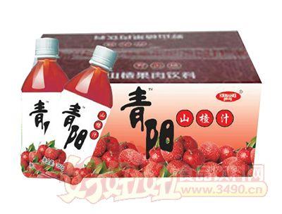 青阳山楂汁350g箱装