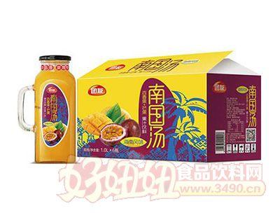 团友南国汤果汁饮料1.0Lx6瓶