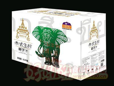 汇乐兹泰式生榨椰子汁外箱