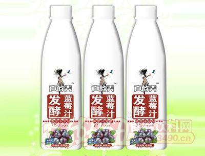 真酵美发酵蓝莓汁1000毫升