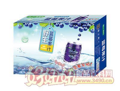 蓝莓汁饮品箱