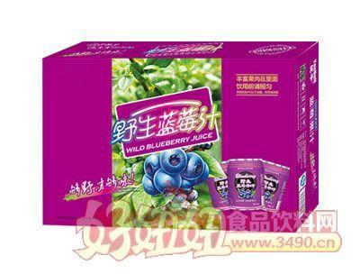 野生蓝莓汁箱子装