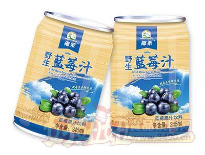 椰栗野生蓝莓汁245ml罐装