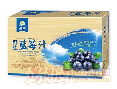 椰栗野生蓝莓汁箱装